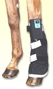 Pulsed Signal Therapy3