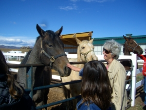 Horse Help Both Young and Old at Zuma's